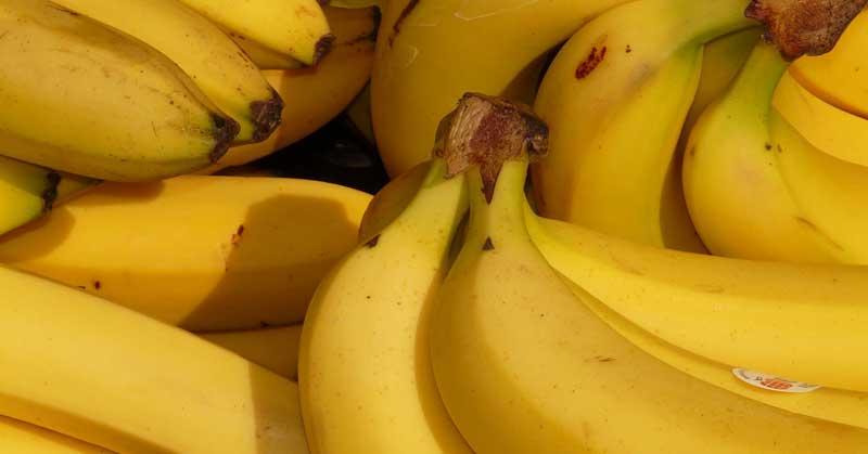 jutarnja banana dijeta