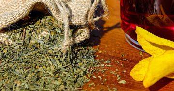 čaj za bronhitis