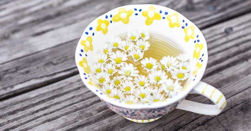 čaj za lečenje akni