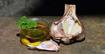 ulje belog luka za vene
