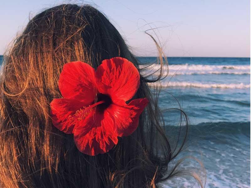 prirodne farbe za kosu