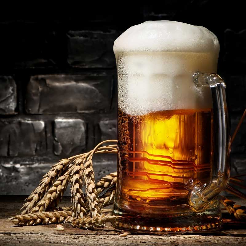 pivo protiv peruti upotreba